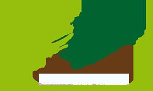 Grüne Linie Stadelmann